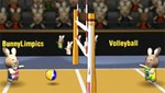 2012 BunnyLimpics Volleyball